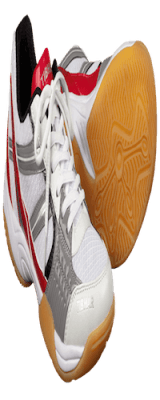 DUAL_SPEED_shoe